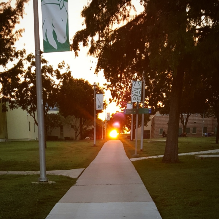Photo of sunrise at Palo Alto College.
