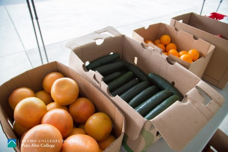 Palo Alto Farmer's Market photo courtesy of PAC PR Dept.